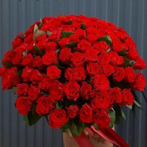 101 красная роза фото букета