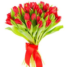 25 червоних тюльпанів
