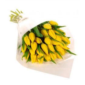 25 жовтих тюльпанів фото