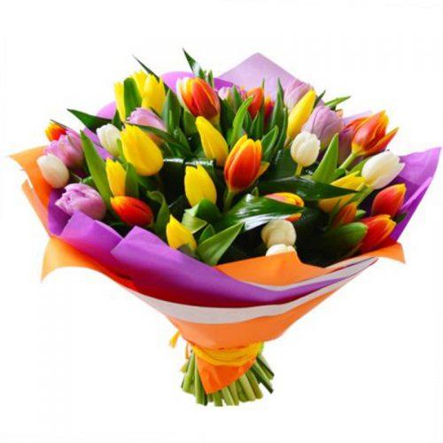49 різнокольорових тюльпанів фото