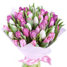 49 різнокольорових тюльпанів