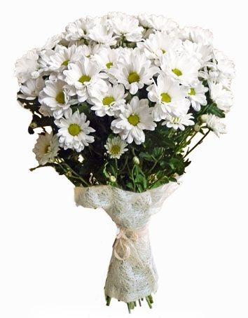 Букет «Очаровашка» хризантеми