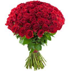 букет 75 червоних троянд фото