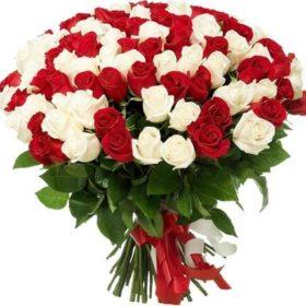 101 червона і біла троянда фото