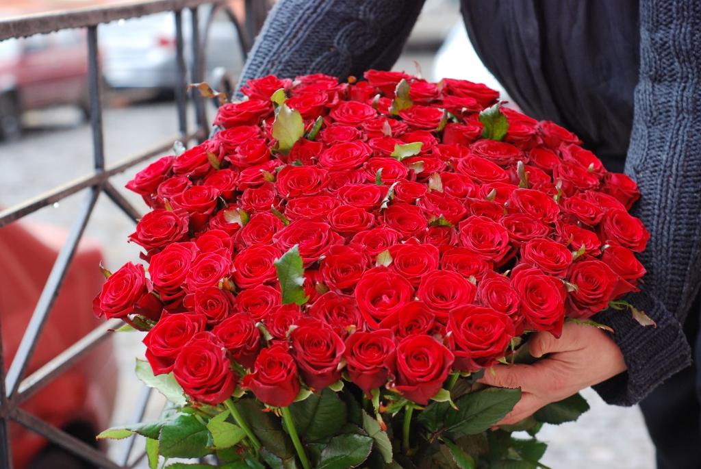101 висока троянда фото