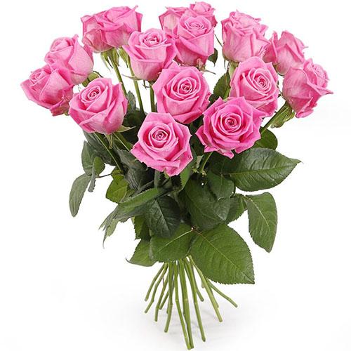 """букет 15 троянд """"Аква"""" фото"""