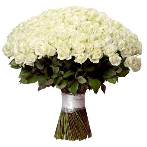 букет 201 біла троянда