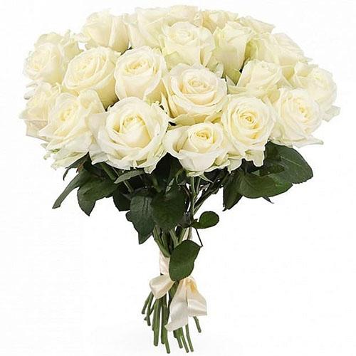 21 біла троянда фото букета