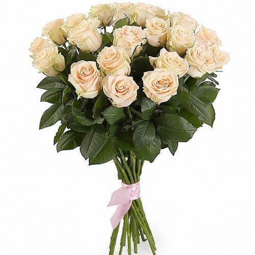 букет 21 кремова троянда