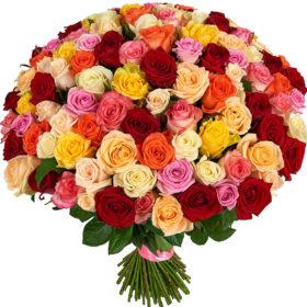 101 троянда мікс фото