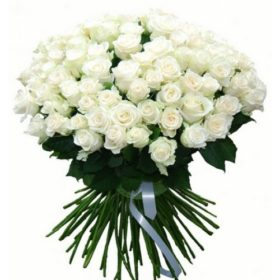 101 біла троянда фото