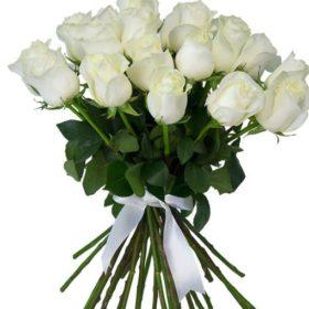 21 біла троянда фото