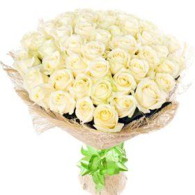 51 біла троянда фото