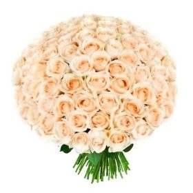 фото 101 кремова троянда