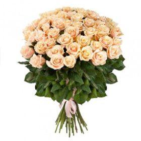 51 кремова троянда фото