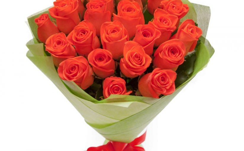 25 троянд Вау фото