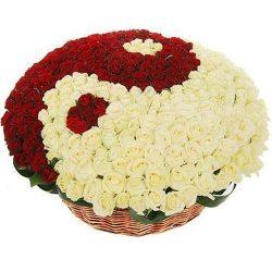 "101 троянда ""Інь-Ян"" у кошику фото"