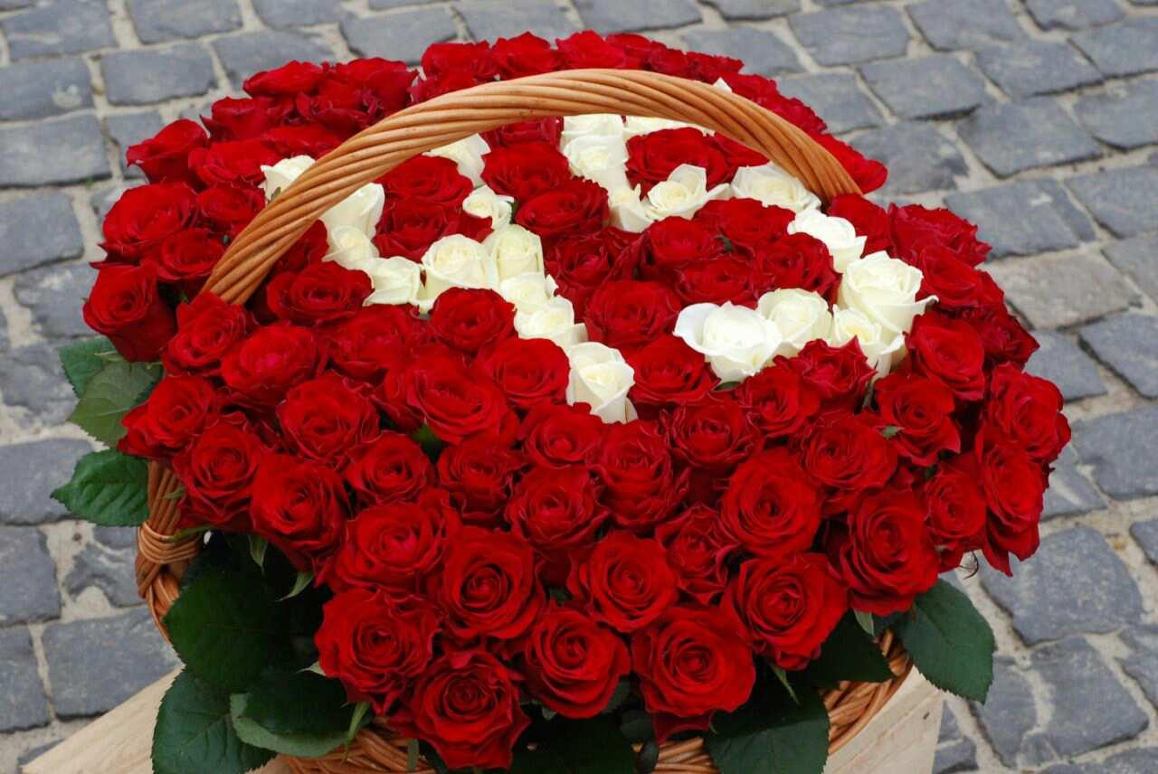 101 троянда у кошику з цифрами фото
