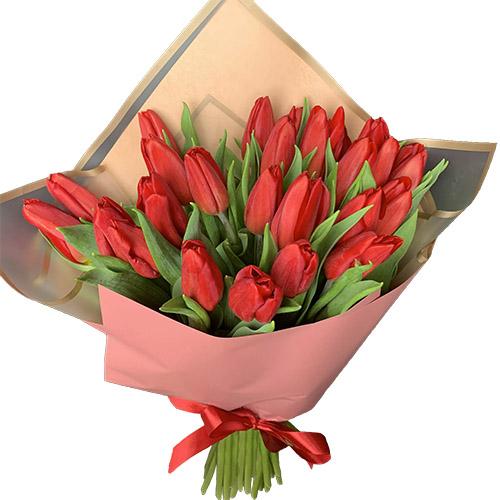 25 червоних тюльпанів фото