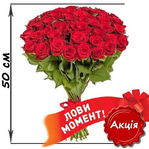 фото товару 51 червона троянда