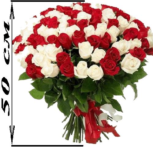 101 троянда мікс червона і біла (50 см) фото