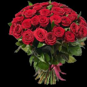 51 червона троянда (50см) фото