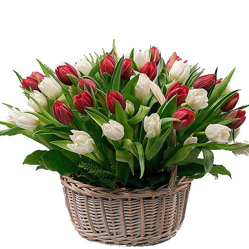 фото товару 51 тюльпан у кошику