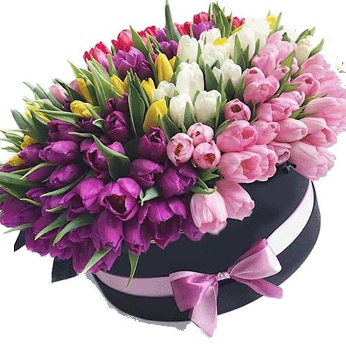 фото товару 151 тюльпан у капелюшній коробці