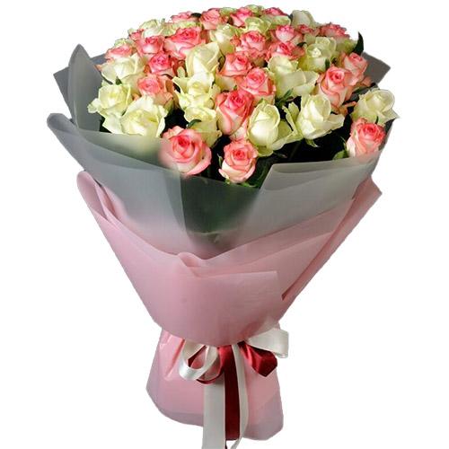 51 біла та рожева троянда фото